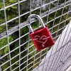 Here is a tradition that Spencer noticed in Paris last year:  lovers lock a padlock on a fence or something like that. thumbnail