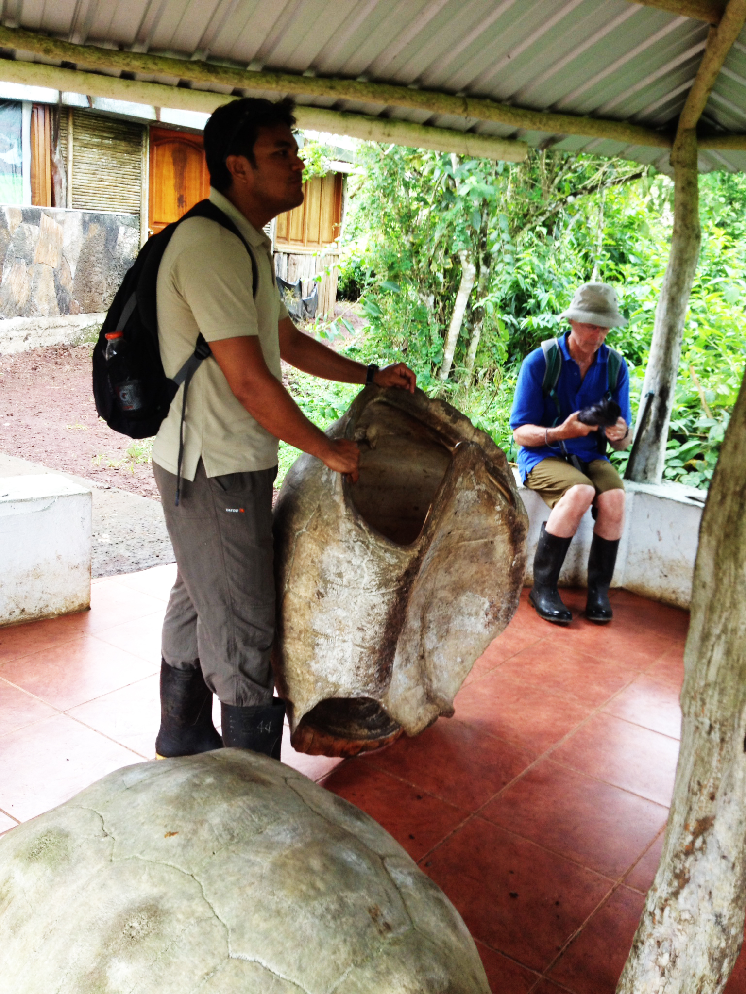 Giovanni and Peter provide scale for this Tortoise shell