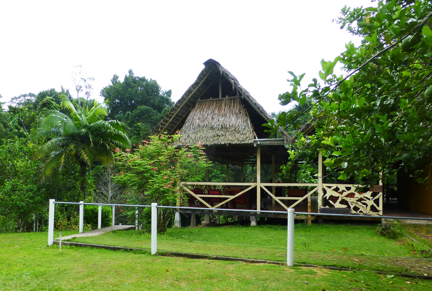 A view of the lodge
