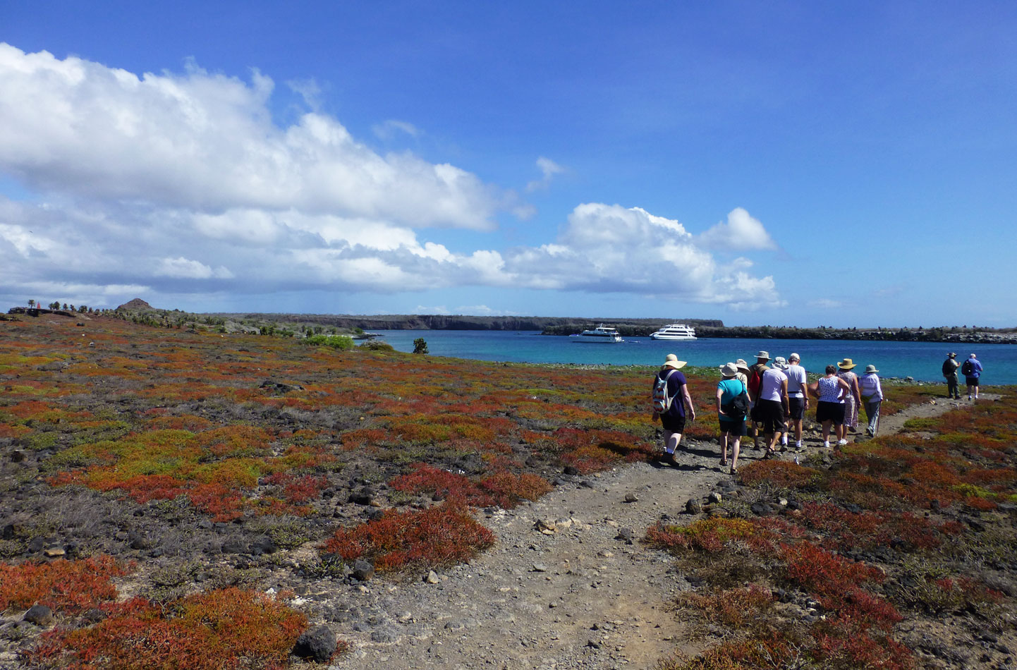 Here is our group walking back to shore.