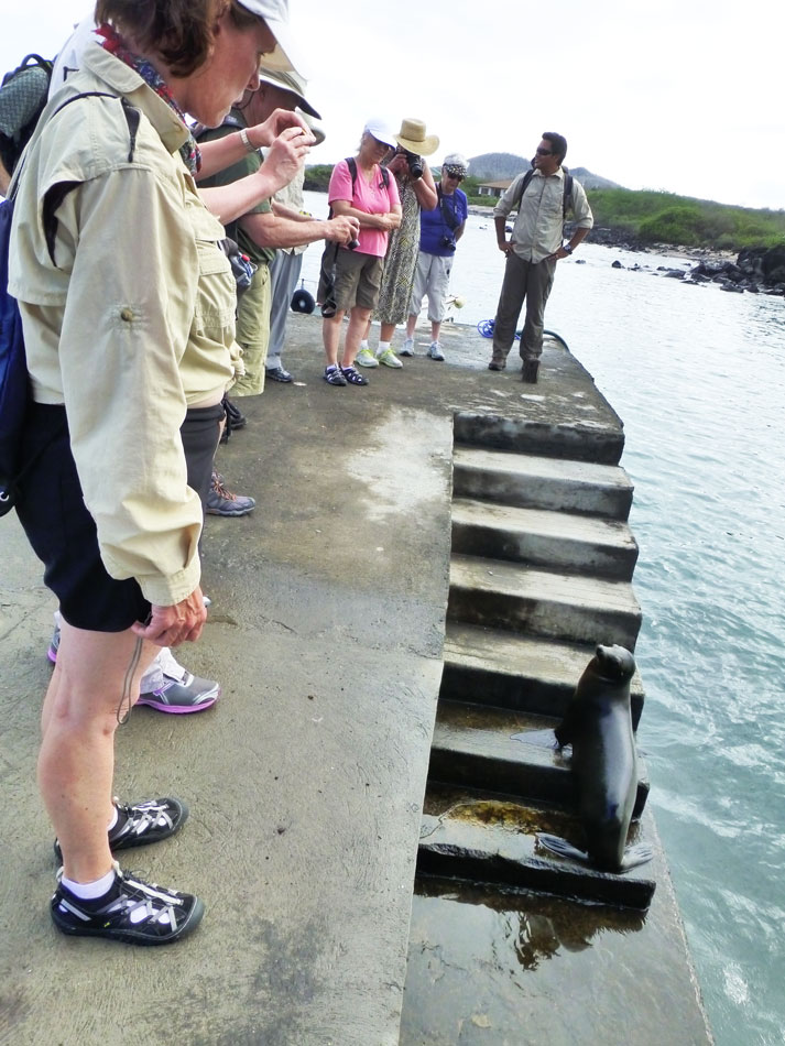 A sea lion blocking our path.  This was not the last time....
