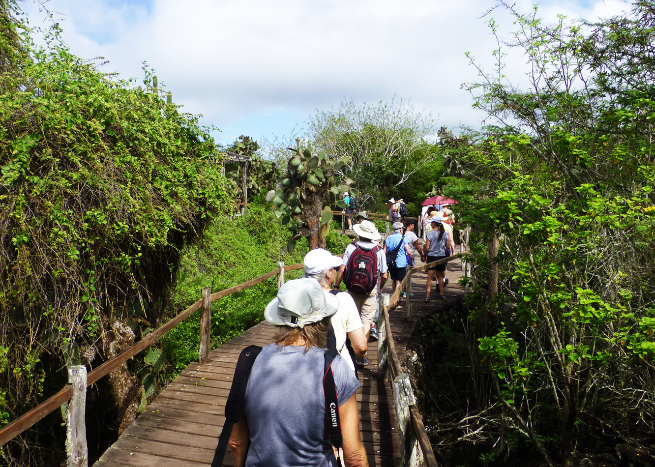 The boardwalk at the Darwin Research Station