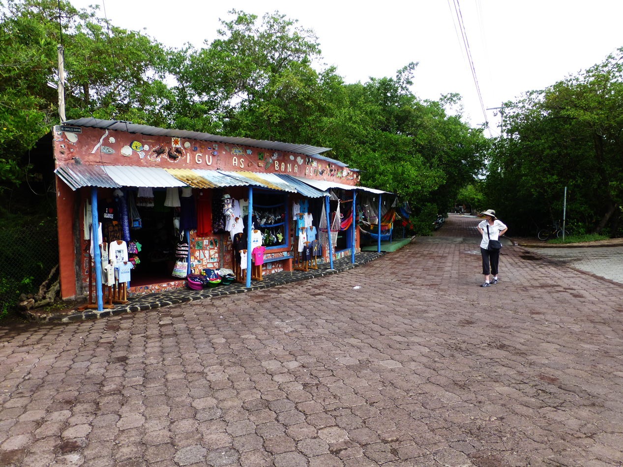 A tourist shop on the road to Puerto Ayora