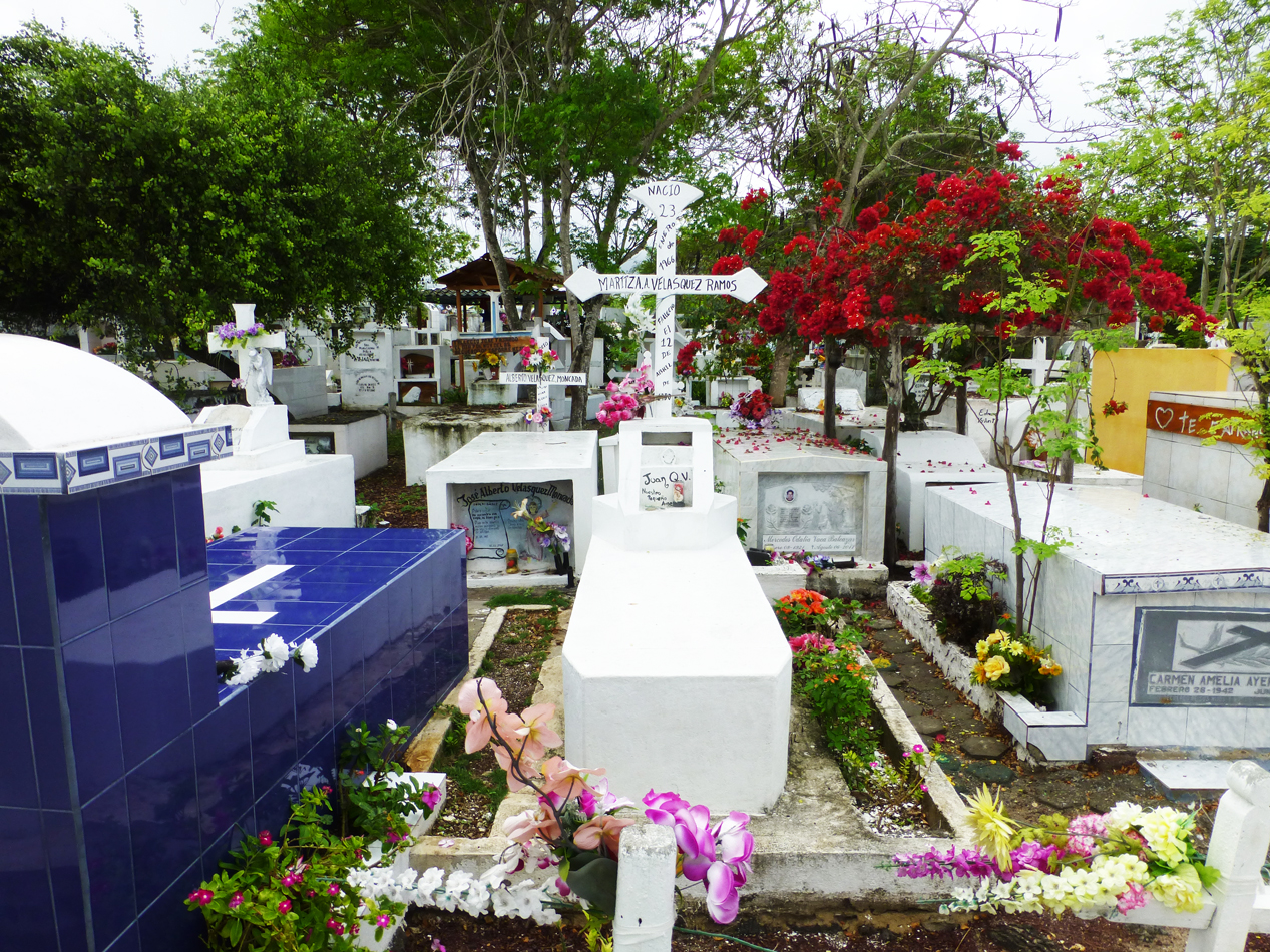A colorful cemetary on the way into Puerto Ayora.