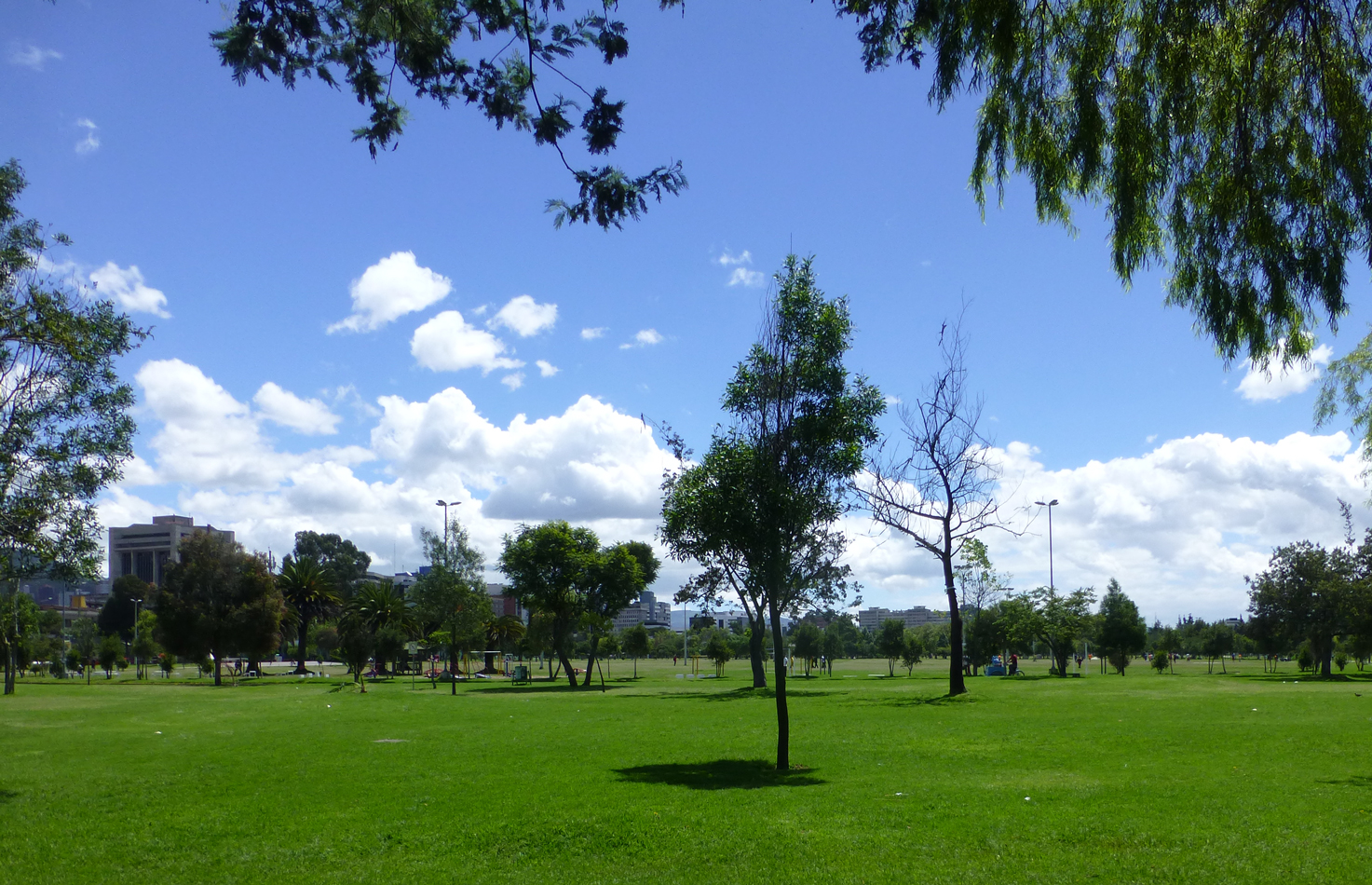 Another view of the Parque La Carolina