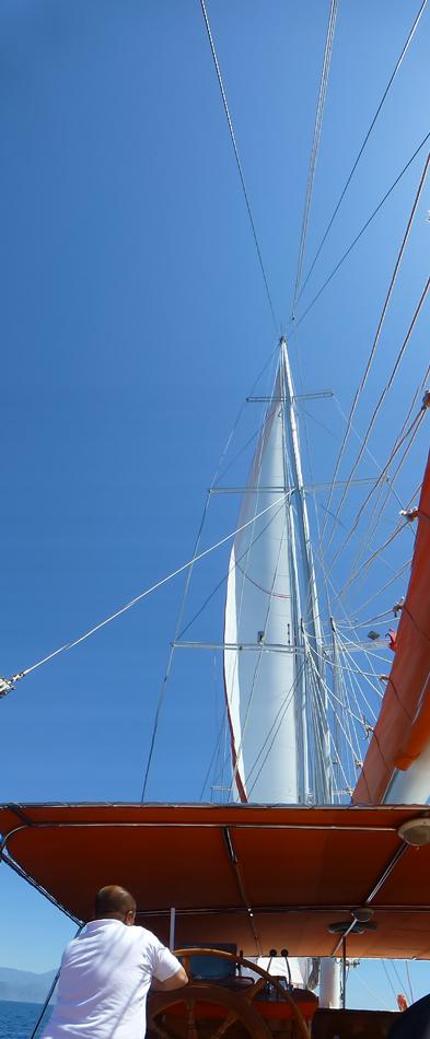 P1030429_boat_mast_pan_950