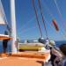 P1030437_boat_sails_950 thumbnail