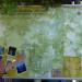 P1000378_islandMap_950 thumbnail